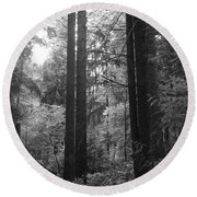 Into The Wood Round Beach Towel