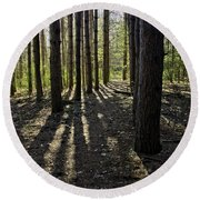 Into The Woods Spnc Michigan Round Beach Towel