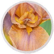 Iris In Gold  Round Beach Towel