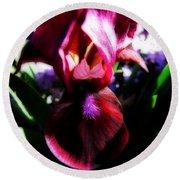 Iris Inner Beauty Round Beach Towel