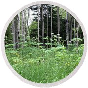 Isle Royale National Park Round Beach Towel
