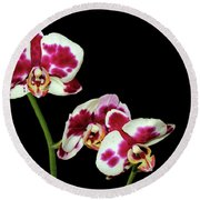 Isolated Orchids Round Beach Towel