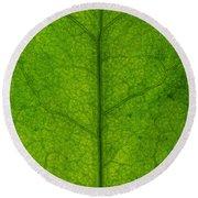 Ivy Leaf Round Beach Towel