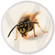 Jammy Wasp Round Beach Towel