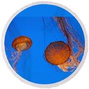 Jellies Round Beach Towel