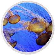 Jellyfish 6 Round Beach Towel
