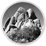 Joshua Tree Center Bw Round Beach Towel