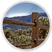 Joshua Tree Cholla Garden Round Beach Towel