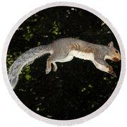 Jumping Gray Squirrel Round Beach Towel