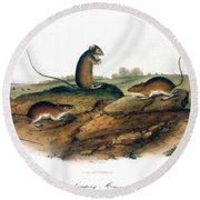 Jumping Mouse, 1846 Round Beach Towel