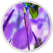 Jungle Iris Round Beach Towel
