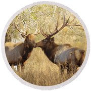 Junior Meets Bull Elk Round Beach Towel by Robert Frederick