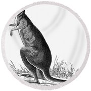 Kangaroo Round Beach Towel