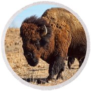 Kansas Buffalo Round Beach Towel