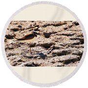 Killdeer Pitching A Fit Round Beach Towel