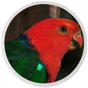 King Parrot - Male 2 Round Beach Towel