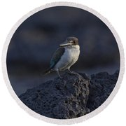 Kingfisher On The Rocks Round Beach Towel