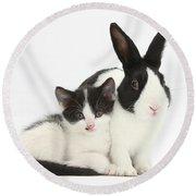 Kitten And Dutch Rabbit Round Beach Towel