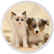 Kitten And Pup Round Beach Towel by Jane Burton