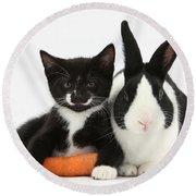 Kitten, Rabbit And Carrot Round Beach Towel