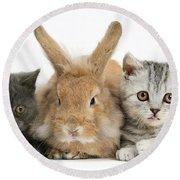 Kittens And Rabbit Round Beach Towel