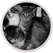 Kittens Corner Round Beach Towel