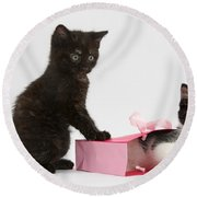 Kittens Playing With Birthday Gift Bag Round Beach Towel