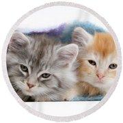 Kittens Under Blanket Round Beach Towel