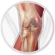 Knee Anatomy Round Beach Towel