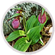 Lady Slipper I Round Beach Towel
