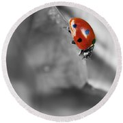 Ladybird On Leaf 1.0 Round Beach Towel
