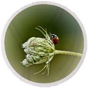 Ladybug Ladybug Fly Away Home Round Beach Towel