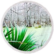Lake Martin Swamp View Round Beach Towel