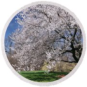landscape 3 Sprawling Apple Tree in Spring Round Beach Towel