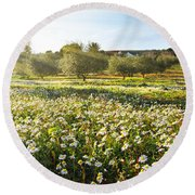Landscape With Daisies Round Beach Towel