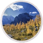 Larch Trees From The Saddleback Trail Round Beach Towel