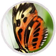 Large Tiger Butterfly Round Beach Towel