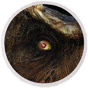 Last Day Of The Jurassic Round Beach Towel