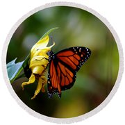 Last Kiss Of The Butterfly Round Beach Towel