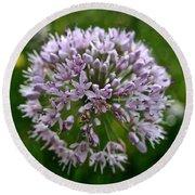 Lavender Globe Lily Round Beach Towel