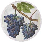 Le Moyne: Grape Vine, C1585 Round Beach Towel