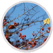 Leaf Among Thorns Round Beach Towel