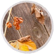 Leaf And Old Wood Fence Round Beach Towel