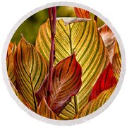 Leaf Lines Round Beach Towel
