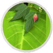 Leaf On Leaf With Red Bud Round Beach Towel