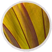 Leaf Patterns Round Beach Towel