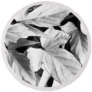Leaf Study In Black And White Round Beach Towel