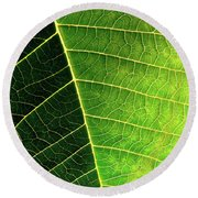 Leaf Texture Round Beach Towel by Carlos Caetano