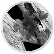 Leaves And Driftwood Bw Round Beach Towel