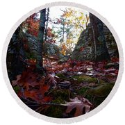 Leaves In The Forest Round Beach Towel